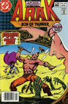 Cover for Arak / Son of Thunder (DC, 1981 series) #20 [Newsstand]