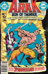 Cover for Arak / Son of Thunder (DC, 1981 series) #24 [Newsstand]