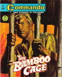 Cover Thumbnail for Commando (D.C. Thomson, 1961 series) #503
