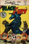 Cover for Black Fury (Charlton, 1959 series) #12