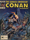 Cover for The Savage Sword of Conan (Marvel, 1974 series) #166 [Direct]