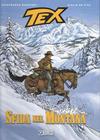 Cover for Tex Romanzi a fumetti (Sergio Bonelli Editore, 2015 series) #4 - Sfida nel Montana