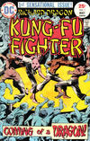 Cover for Richard Dragon, Kung-Fu Fighter (DC, 1975 series) #1