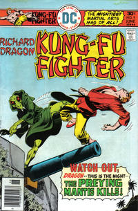 Cover for Richard Dragon, Kung-Fu Fighter (DC, 1975 series) #9