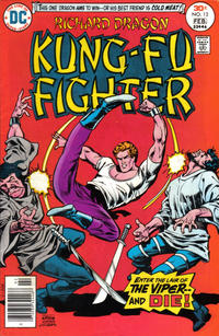 Cover Thumbnail for Richard Dragon, Kung-Fu Fighter (DC, 1975 series) #13