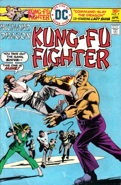Cover for Richard Dragon, Kung-Fu Fighter (DC, 1975 series) #7