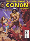 Cover Thumbnail for The Savage Sword of Conan (1974 series) #198 [Direct]