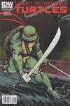 Cover for Teenage Mutant Ninja Turtles (IDW, 2011 series) #1 [Cover RI-B - Incentive Dan Duncan Gatefold Variant]