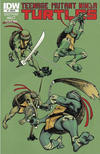 Cover for Teenage Mutant Ninja Turtles (IDW, 2011 series) #1 [Cover RE - NECRA New England Comic Retailer Alliance Exclusive Dan Duncan Variant]