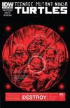Cover for Teenage Mutant Ninja Turtles (IDW, 2011 series) #6 [Cover A - Dan Duncan]