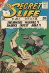 Cover for My Secret Life (Charlton, 1957 series) #41 [British]