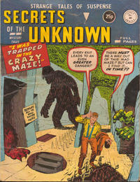 Cover Thumbnail for Secrets of the Unknown (Alan Class, 1962 series) #203