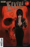 Cover for Elvira: Mistress of the Dark (Dynamite Entertainment, 2018 series) #1 [Cover E Robert Hack]