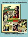 Cover for Gwandanaland Comics (Gwandanaland Comics, 2016 series) #30 - The Complete Spirit of Frankenstein