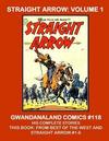Cover for Gwandanaland Comics (Gwandanaland Comics, 2016 series) #118 - Straight Arrow: Volume 1