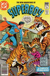 Cover Thumbnail for The New Adventures of Superboy (1980 series) #13 [Newsstand]