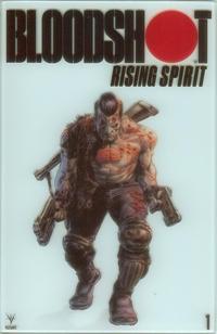 Cover Thumbnail for Bloodshot Rising Spirit (Valiant Entertainment, 2018 series) #1 [Cover E - Glass Cover Variant - Doug Braithwaite]