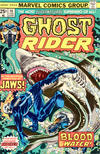 Cover for Ghost Rider (Marvel, 1973 series) #16 [Regular Edition]
