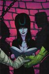 Cover Thumbnail for Elvira: Mistress of the Dark (2018 series) #4 [Cover E virgin Art Craig Cermak]
