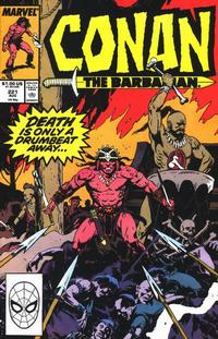 Cover Thumbnail for Conan the Barbarian (Marvel, 1970 series) #221 [Direct]