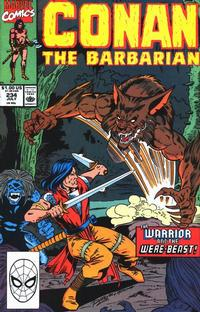 Cover Thumbnail for Conan the Barbarian (Marvel, 1970 series) #234 [Direct Edition]