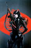 Cover for G.I. Joe: A Real American Hero (IDW, 2010 series) #252 [Cover RE - KRS Comics Exclusive - Warren Louw Virgin Art]
