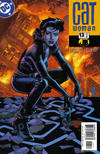 Cover for Catwoman (DC, 2002 series) #13