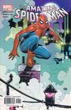 Cover for The Amazing Spider-Man (Marvel, 1999 series) #48 (489) [Direct Edition]