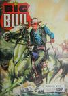 Cover for Big Bull (Impéria, 1972 series) #13