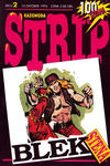 Cover for Strip razonoda (BPA, 1994 series) #2