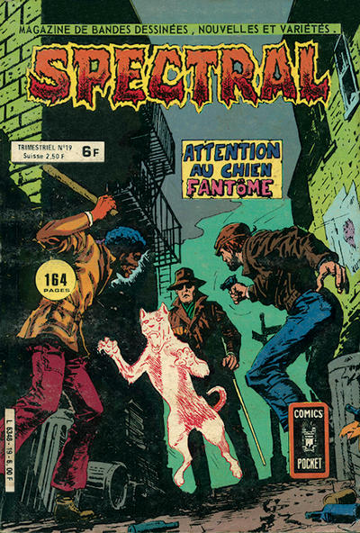 Cover for Spectral (Arédit-Artima, 1978 series) #19