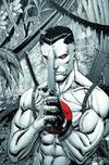 Cover Thumbnail for Bloodshot (2019 series) #1 [Kowabunga Comics - Virgin Cover - Tim Seely]