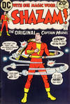 Cover for Shazam! (DC, 1973 series) #5