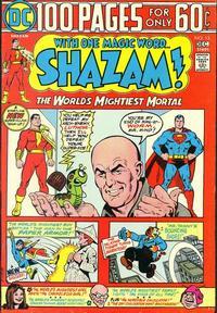 Cover Thumbnail for Shazam! (DC, 1973 series) #15