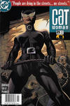 Cover for Catwoman (DC, 2002 series) #25 [Newsstand]