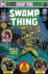 Cover Thumbnail for Swamp Thing Giant (2019 series) #2 [Direct Market Edition]