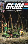 Cover for G.I. Joe: A Real American Hero (IDW, 2010 series) #173 [Cover B]