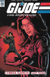 Cover for G.I. Joe: A Real American Hero (IDW, 2010 series) #228 [Regular Cover]