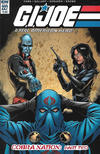 Cover for G.I. Joe: A Real American Hero (IDW, 2010 series) #227 [Regular Cover]