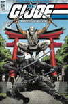 Cover for G.I. Joe: A Real American Hero (IDW, 2010 series) #244 [Cover A]