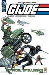 Cover for G.I. Joe: A Real American Hero (IDW, 2010 series) #264 [Cover B - Dan Fraga and Adelso Corona]