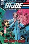 Cover for G.I. Joe: A Real American Hero (IDW, 2010 series) #258 [Cover B - John Royle]
