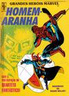 Cover for Grandes Heróis Marvel (Editora Abril, 1983 series) #18