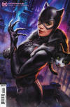 Cover Thumbnail for Catwoman (2018 series) #21 [Ian MacDonald Cover]