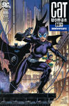 Cover Thumbnail for Catwoman 80th Anniversary 100-Page Super Spectacular (2020 series) #1 [2000s Variant Cover by Jim Lee, Scott Williams, and Alex Sinclair]