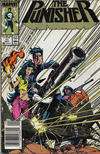 Cover for The Punisher (Marvel, 1987 series) #11 [Newsstand]