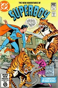 Cover Thumbnail for The New Adventures of Superboy (DC, 1980 series) #13 [Direct]