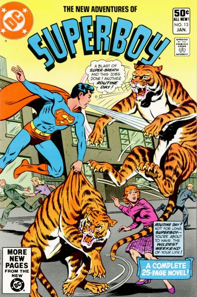 Cover for The New Adventures of Superboy (DC, 1980 series) #13 [Direct]