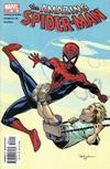 Cover for The Amazing Spider-Man (Marvel, 1999 series) #502 [Direct Edition]