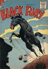 Cover Thumbnail for Black Fury (Charlton, 1955 series) #2